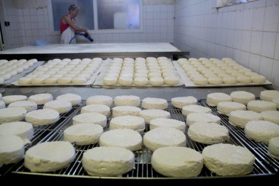 Fabrication des fromages à l'atelier de la Ferme de l'Espoir